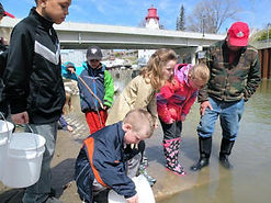 Children Releasing Fish Kincardine