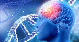 brain chemistry.jpg