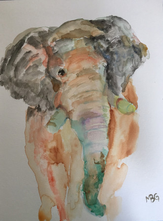 Elephant Aquarelle