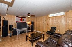 Living Room: Lower Level
