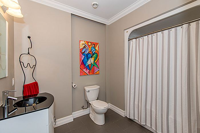 Bathroom: Lower Level