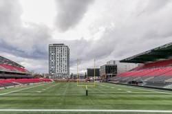 Stadium Lounge Views