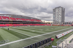 Stadium Lounger Views
