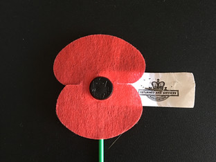 Remembrance Sunday  - Lest we Forget