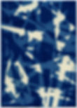 547-CYAN-2011-72dpi.jpg