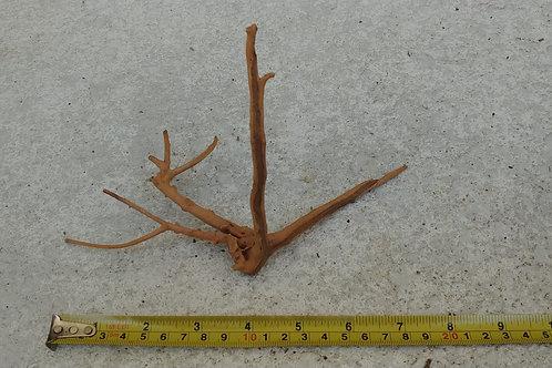 Spiderwood 010