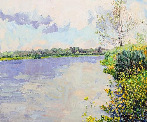 Summer on the Bayou II (2016)