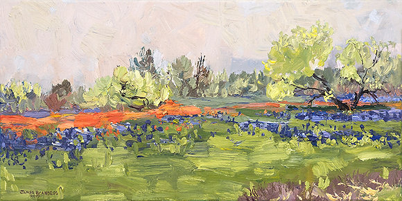 Ennis, Texas, Bluebonnets and Indian Paintbrush Hand-Deckled Card