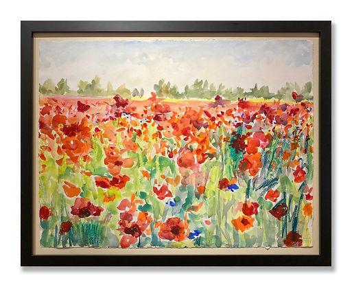 The Poppy Field.jpg