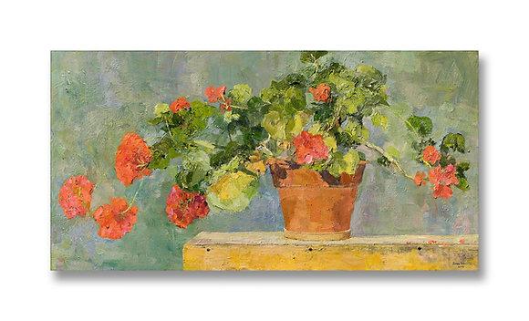 "Early Spring Studio Geranium (2009) Giclée on Canvas - 17"" x 34"""