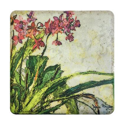 Coaster #4 - Kauai