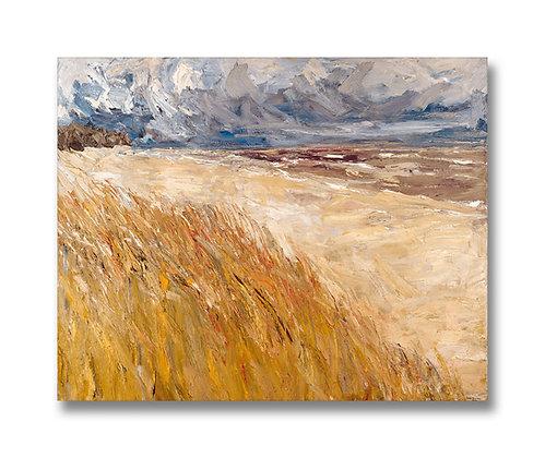 "Autumn Dunes, Saugatuck (2000) Giclée on Canvas - 24"" x 30"""