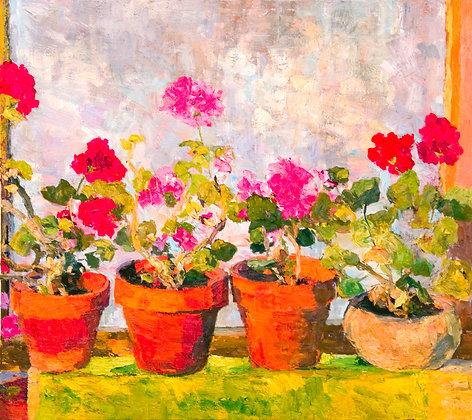 Winter Geraniums (2006) A2 Notecard