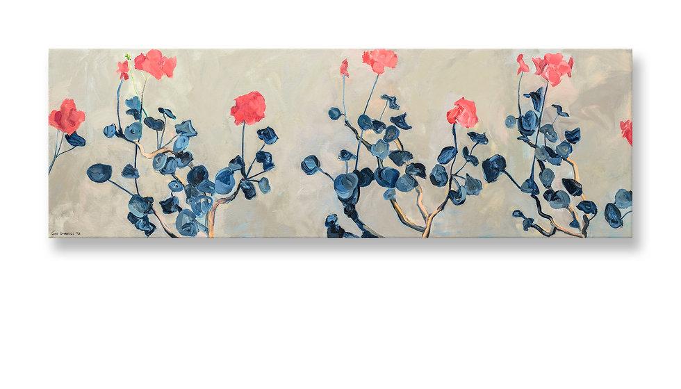 Slider - Geraniums (1992) Canvas.jpg