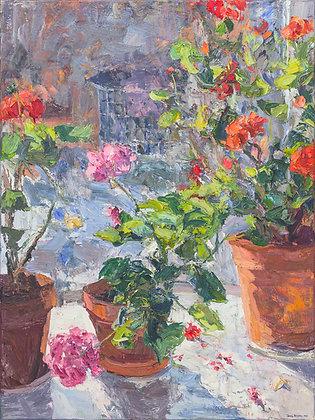 Geraniums in My Window (1999) Hand-Deckled Card