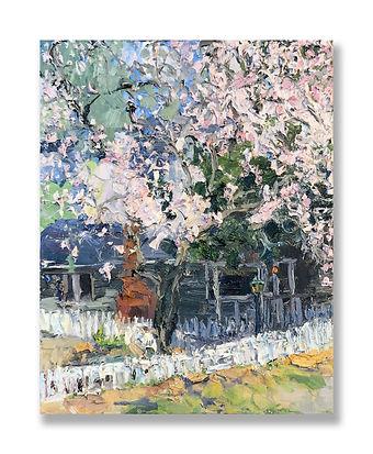 Magnolia (2021).jpg