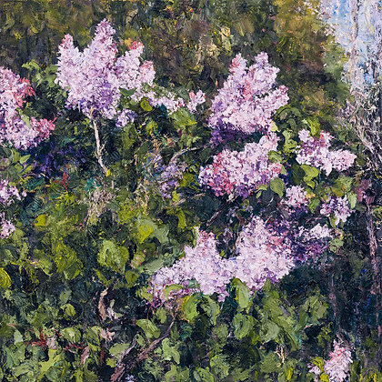 Lilacs (2015) Hand-Deckled Card
