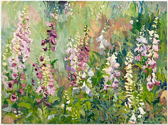 Foxglove (2008) Hand-Deckled Card