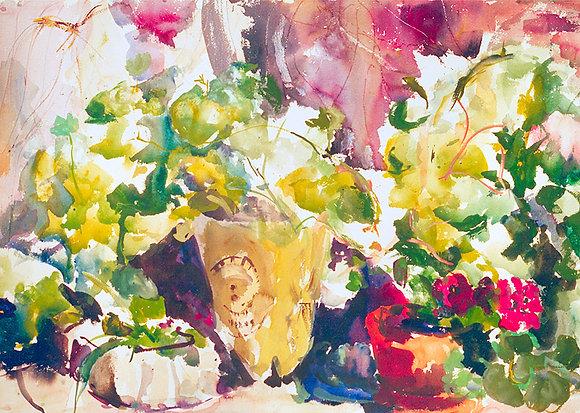Charmion's Garden (2000) Hand-Deckled Card