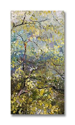 """Spring Dogwood, Saugatuck (2002) Giclée on Canvas - 38.5"""" x 20"""""""