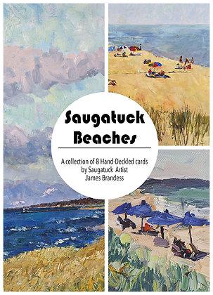 The Saugatuck Beaches (8)