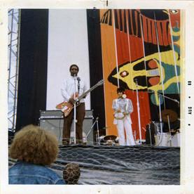 Seattle Pop Bo Diddley.jpg