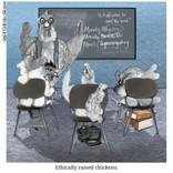 GITA (Ethical Chickens).jpg