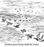 Copy of Elsewhere 54 (German Geese).jpg