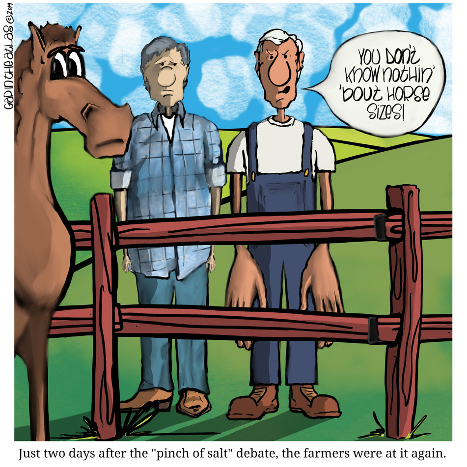 GITA (Horse Hands).jpg
