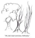 Elsewhere (plastic surgery tree).jpg