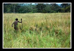 West Papua #5