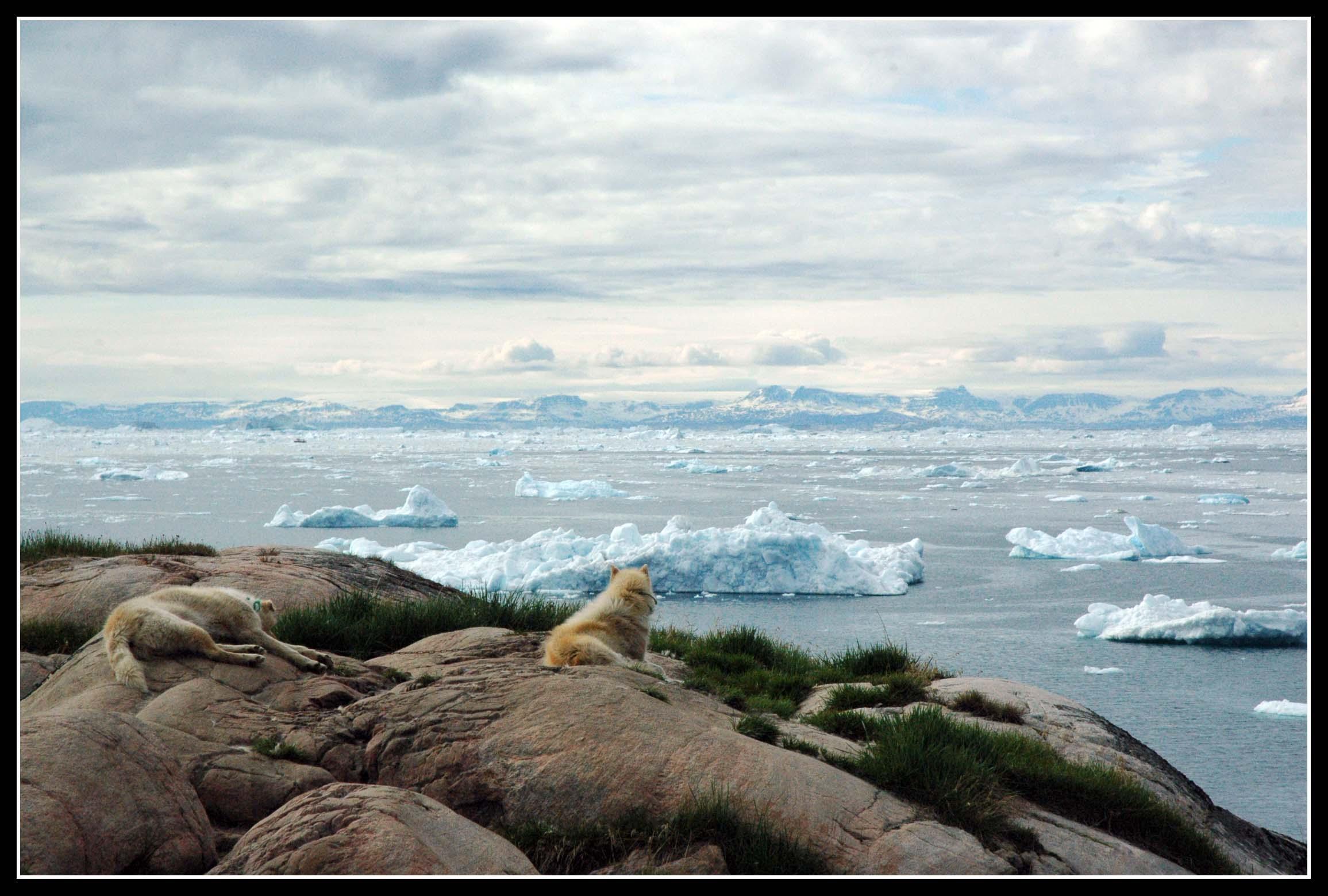 #15 Greenland - Kalaallit Nunaat
