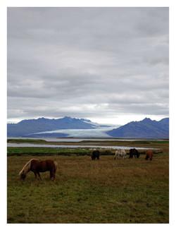 Iceland #5