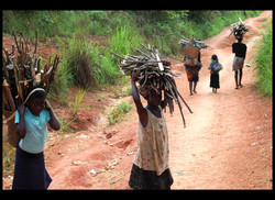 Flickr - #2 DR Congo