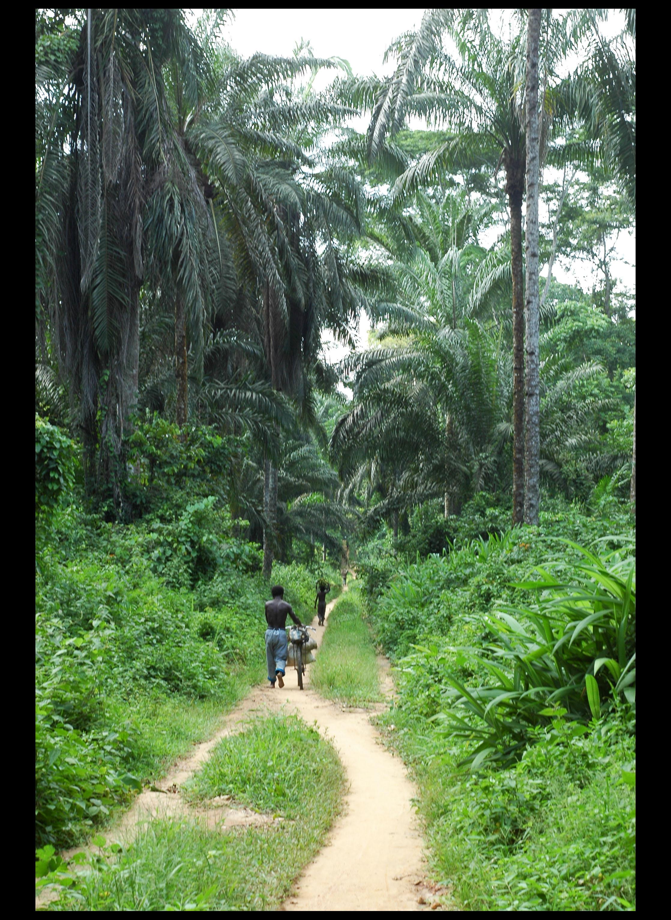 Flickr - #5 DR Congo