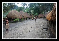 West Papua #4