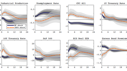 Information and Policy Shocks in Monetary Surprises