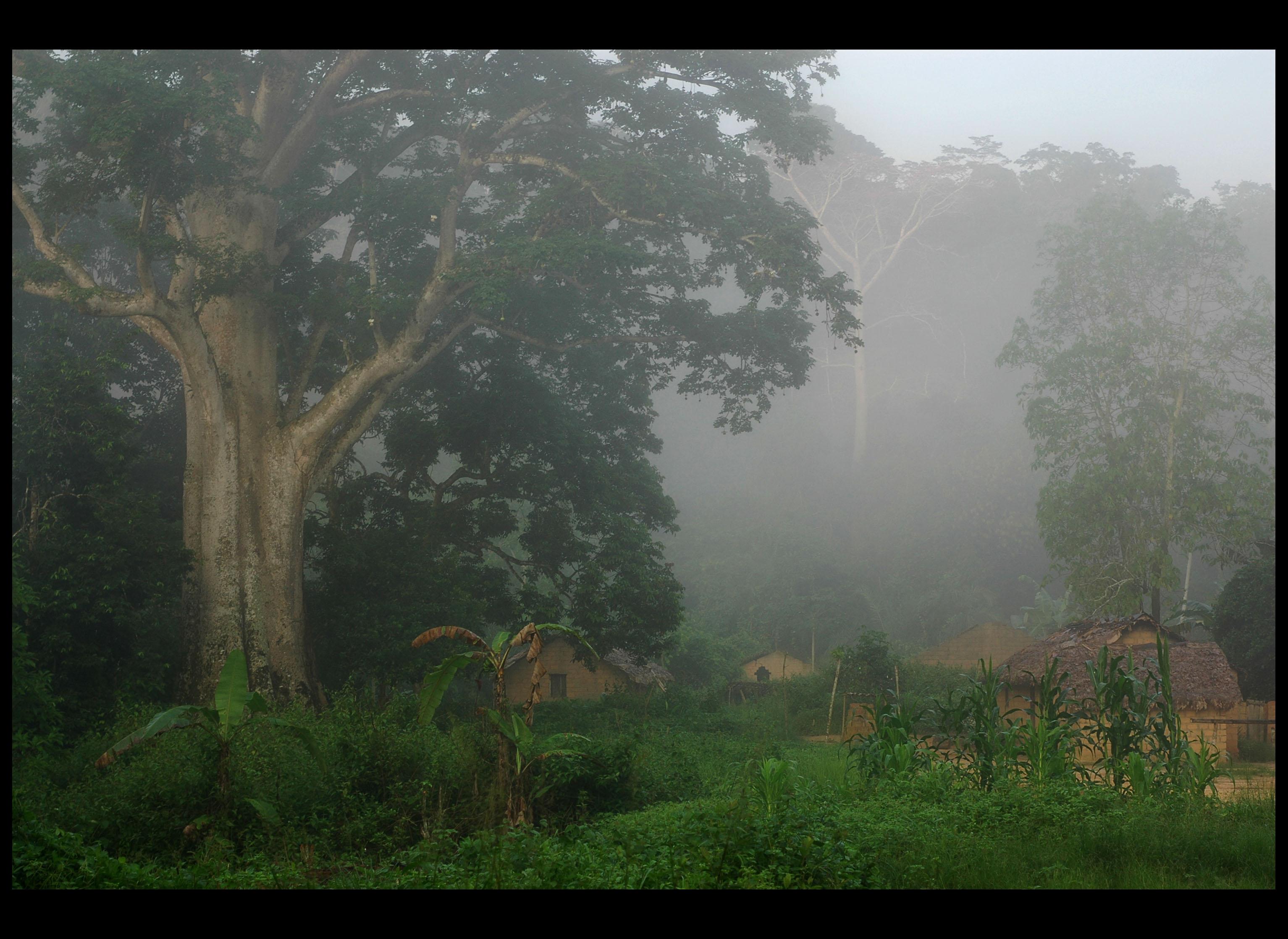 Flickr - #1 DR Congo