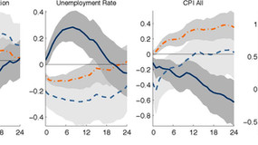 S. Miranda-Agrippino, G. Ricco - The Transmission of Monetary Policy Shocks