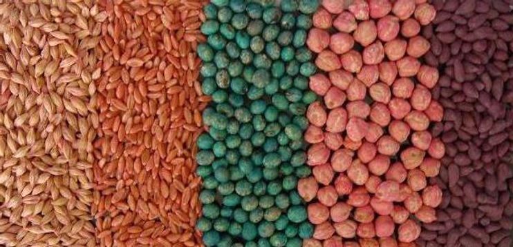 Treated Seed Samples cropped.JPG