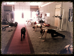Have you tried out our 7 am Boot Camp??
