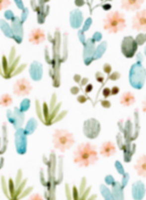 cactuspic1.jpg