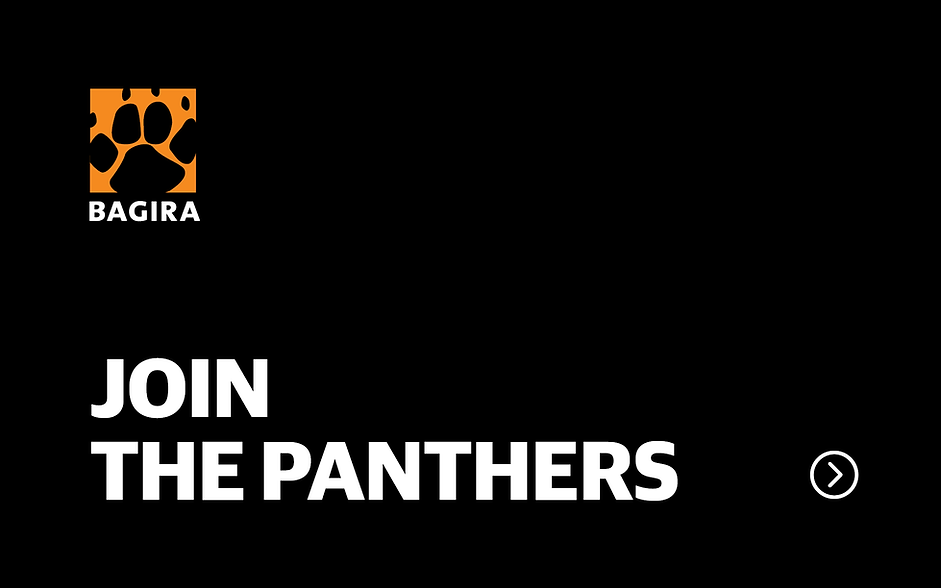Join the panthers.png