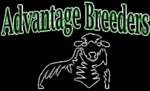 Logo sheep transparten.png