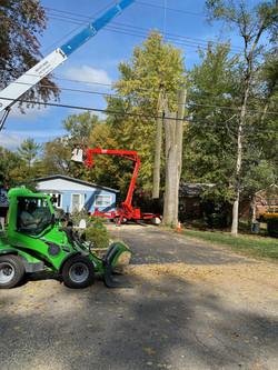 Spider Crane and Green Loader.JPEG