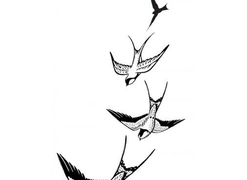 Living like a Swallow