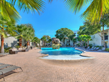 You will love our palm tree filled pool house!