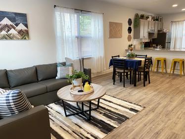 Modern Living Room Furnishings