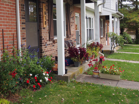 Show Your Personality with Full Front Lawns