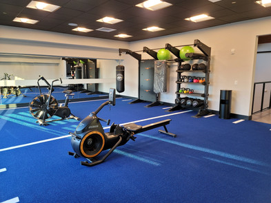 Turf TRX Room with Free Weights